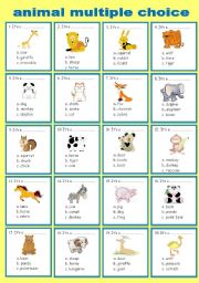 animals (multiple choice)