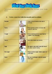 English Worksheets: What Your Body Does