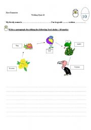 English Worksheet: In the Ocean Food Chain