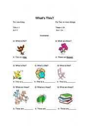 English Worksheets:  What�s This