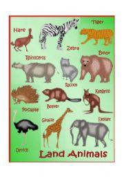 English worksheet: Land Animals