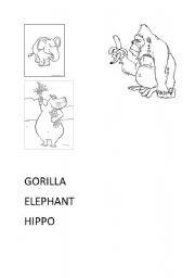 English Worksheets: ANIMALS 2