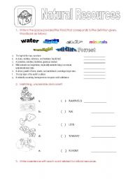 English Worksheet: NATURAL RESOURCES FOR KIDS!