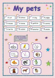 English Worksheets: My pets