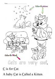 English Worksheets: C is for cat