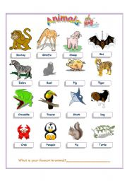 English Worksheets: Animlas
