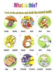 English Worksheets: What is this? Animals!!!