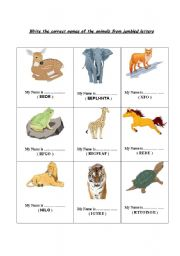 English worksheets: Animal Names