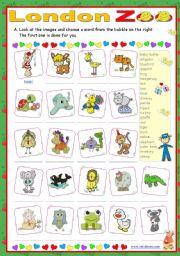 English Worksheet: London Zoo