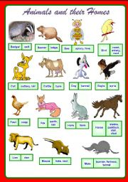 English Worksheet: Animals and their homes. Part 1 of 2 **fully editable