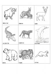 English Worksheets: animals in danger(2)