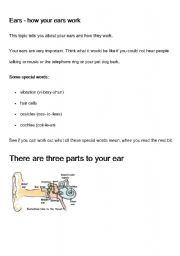 English Worksheets: How the ear works