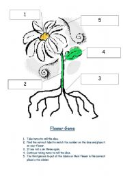 English worksheets: Parts of a flower game
