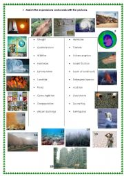 English Worksheet: ecological disasters and global warming