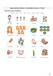 English Worksheets: Plurals (2) - Irregular forms + Revision