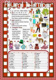 English Worksheets: Plural Number
