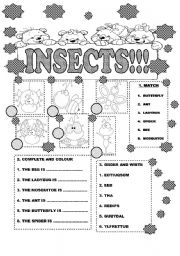 English Worksheet: INSECTS FOR LITTLE KIDS/ GET FUN