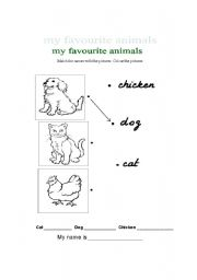 English Worksheets: Favourite animals - 1st Graders