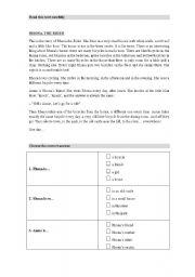 English Worksheets: RHONA THE RIDER