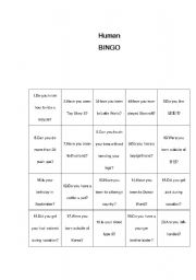 english worksheet human bingo