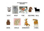 English Worksheets: THE ANIMALS (MAMMALS) (B)