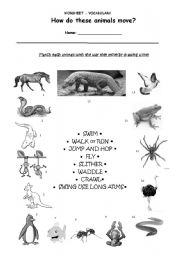 english worksheets vocabulary how do animals move. Black Bedroom Furniture Sets. Home Design Ideas