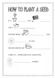 English Worksheet: HOW TO PLANT A SEED. LIFE CYCLE OF A PLANT