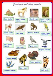 English Worksheets: Creatures and their sounds Part 2 ** fully editable
