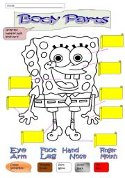 English Worksheets: body parts and colours