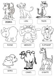 ZOO ANIMALS PICTIONARY
