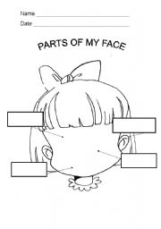 English Worksheet: PARTS OF MY FACE