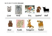 English Worksheets: THE CALLIGRAPHY OF THE ANIMALS (MAMMALS -B-).