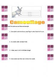 English Worksheets: CAMOUFLAGE