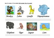 English Worksheets: THE CALLIGRAPHY OF THE ANIMALS (MAMMALS -C-)