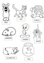English Worksheets: PETS PICTIONARY