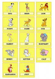 English Worksheet: Animal babies
