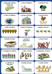 English Worksheets: Collective nouns 1 of 2