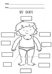 English Worksheets: PARTS OF MY BODY