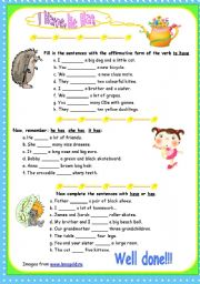 English Worksheet: Have, has - Affirmative - 3 exercises, fully editable