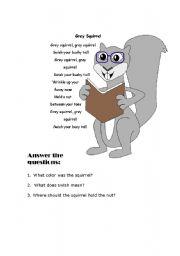 English Worksheets: Grey Squirrel