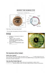 English Worksheets: Eye ( Inside of the human eye)