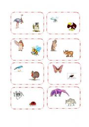 English Worksheets: Animals Comparision Cards