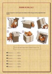 English Worksheets: Where is the cat?