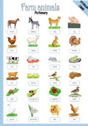 English Worksheet: FARM ANIMALS - PICTIONARY