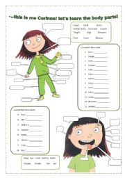 English Worksheet: let�s learn the  body parts