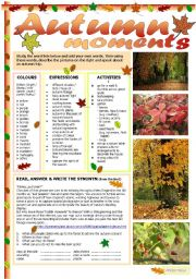 English Worksheets: Autumn moments
