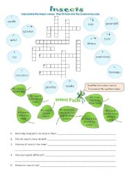 English Worksheets: Types of Animals:  Insects