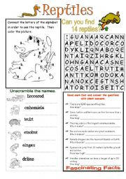 English Worksheet: Types of Animals: Reptiles