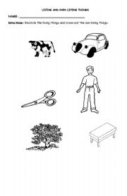English worksheets: Living and Non living Things
