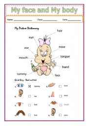 English Worksheets: My face and My body